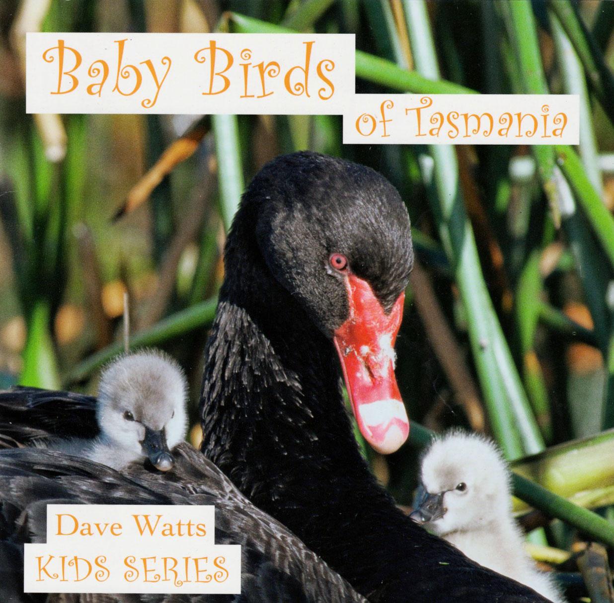 Baby Birds of Tasmania - Kids Series