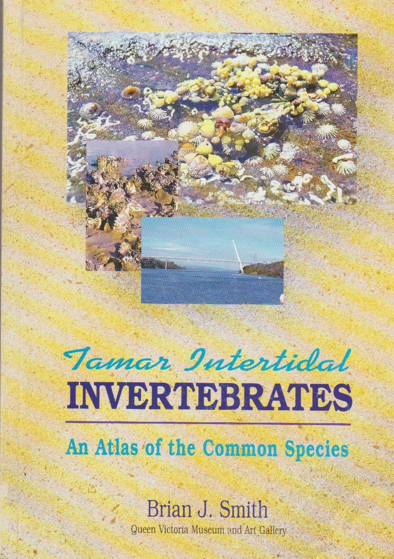 Tamar Intertidal Invertebrates - An Atlas of the Common Species