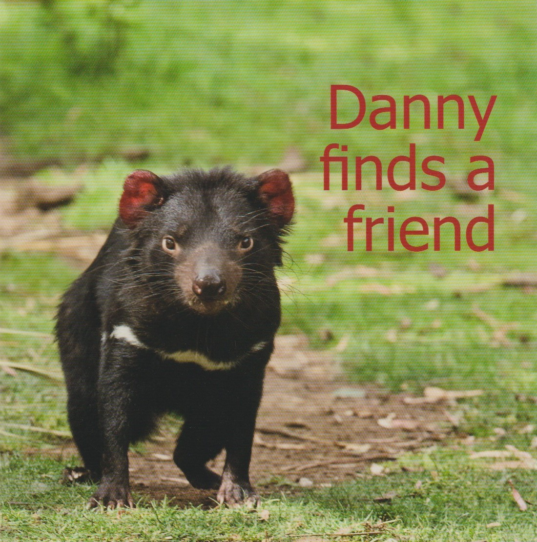 Danny finds a Friend - children's book about a Tasmanian Devil