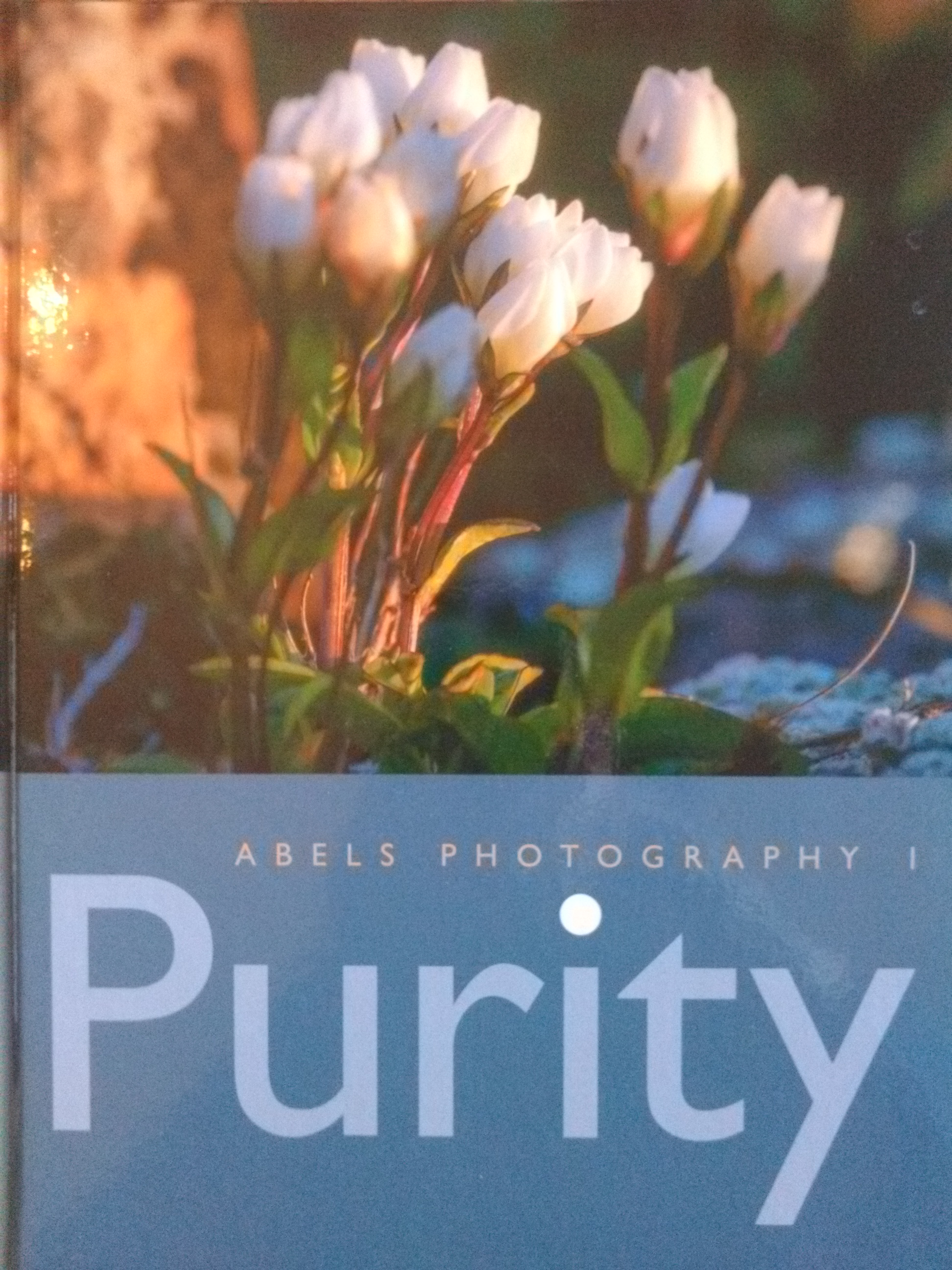 Purity - Abels Photography I