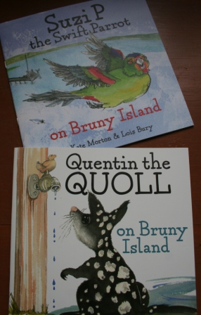 Quentin the Quoll on Bruny Island